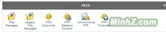 File Manager - cPanel X