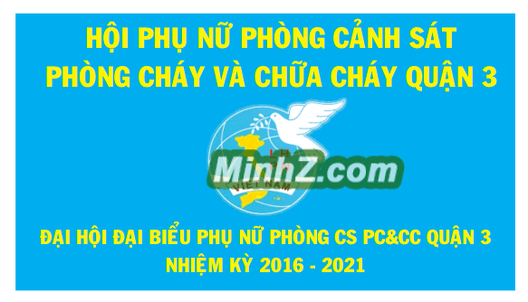 the hoi lien hiep phu nu